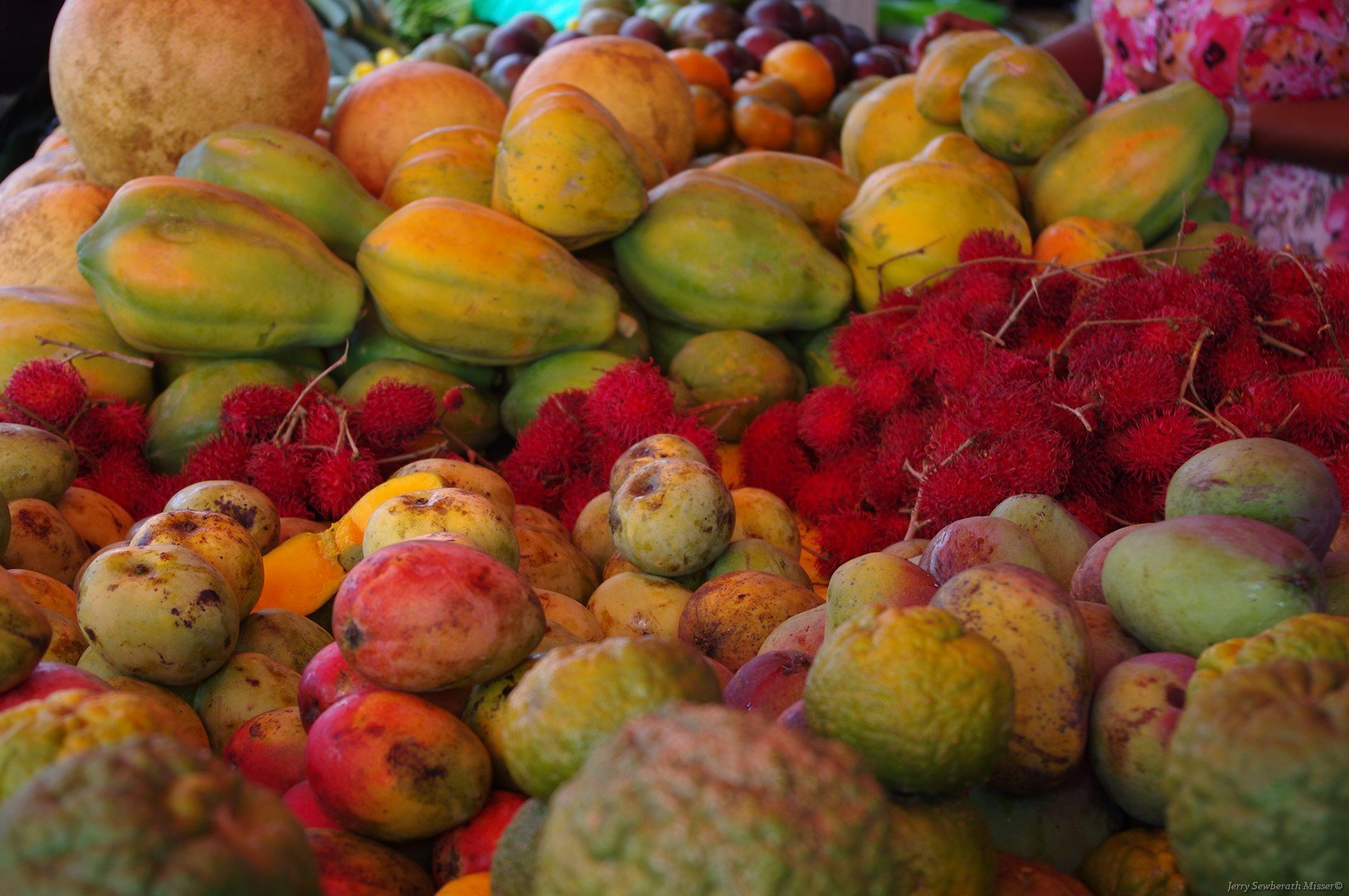 Fruits of the Guianas